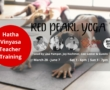 Red Pearl Yoga Grand (re)Opening Party & Holiday Open House